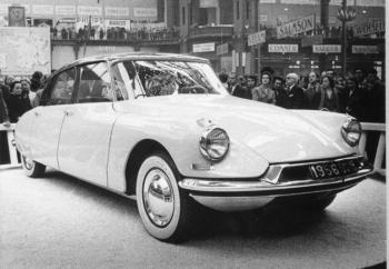 salon 1955