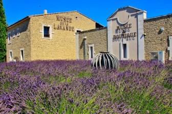 4 lu 25 musée lavande
